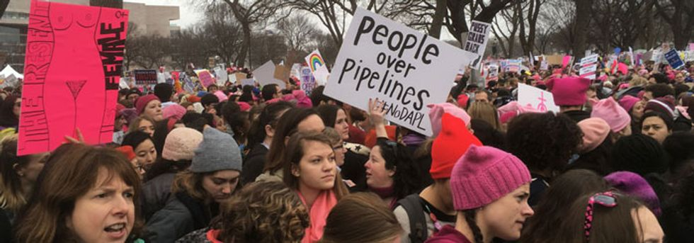 At the Women's March, a call for climate protection, too.