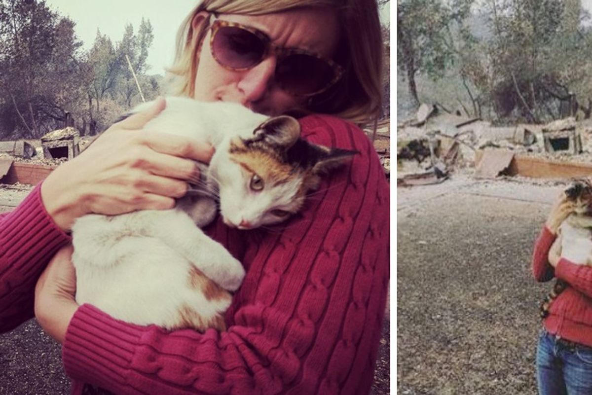"Woman's Home Completely Destroyed in Wildfire But She Finds Her Cat—""It was really surreal!"""