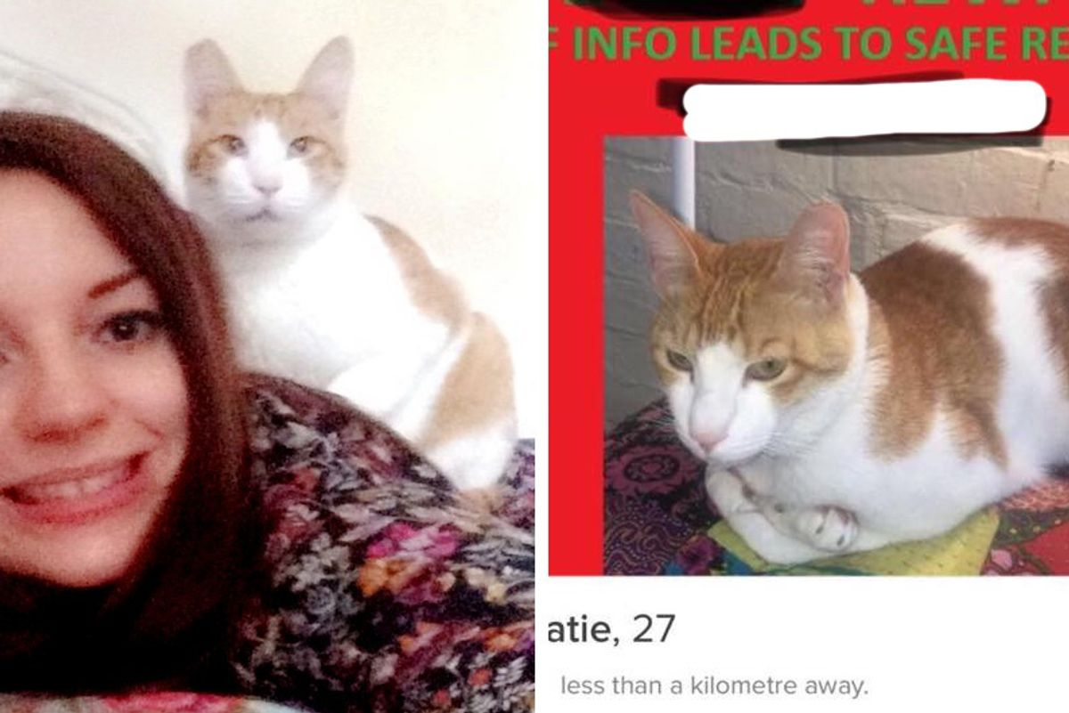 Woman Uses Dating App Tinder to Track Down Her Missing Cat...