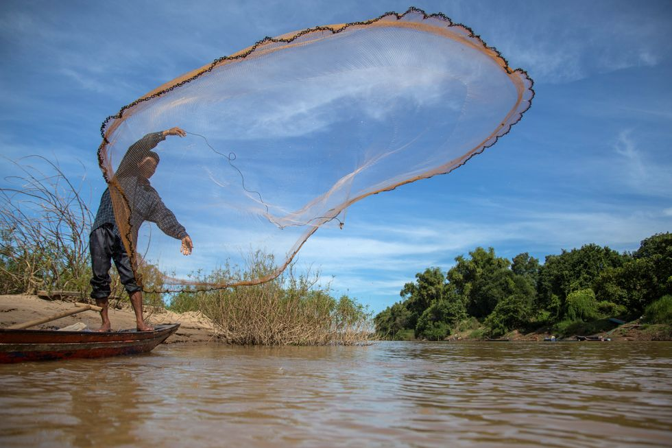 Planned Mega-Dam Threatens Fish Populations and Food Security in Cambodia