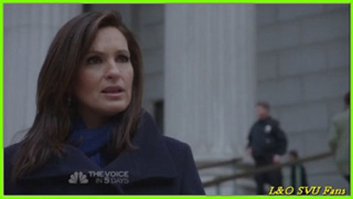 9 Ways 'Law And Order' Understand Our Feelings On Midterms
