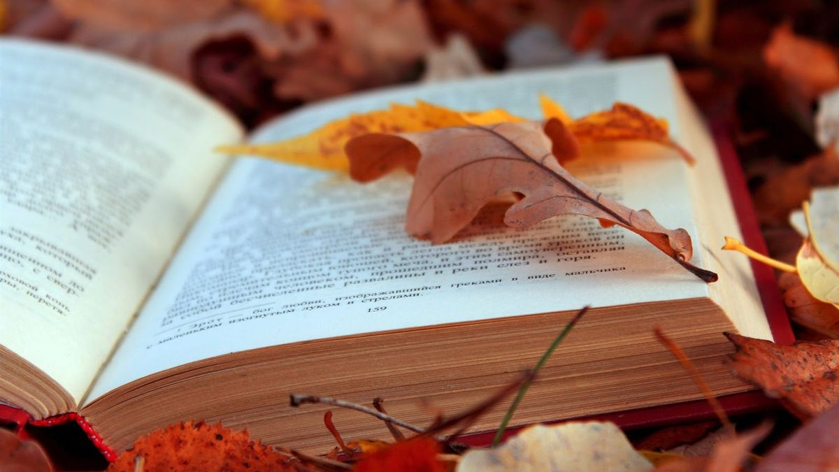 Top 3 Classic Novels to Curl Up With this Fall