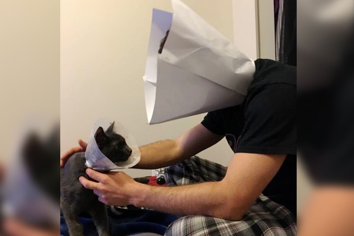 """Cat Dad Makes Human-sized """"Cone-of-Shame"""" So His Kitty Doesn't Feel Alone…"""