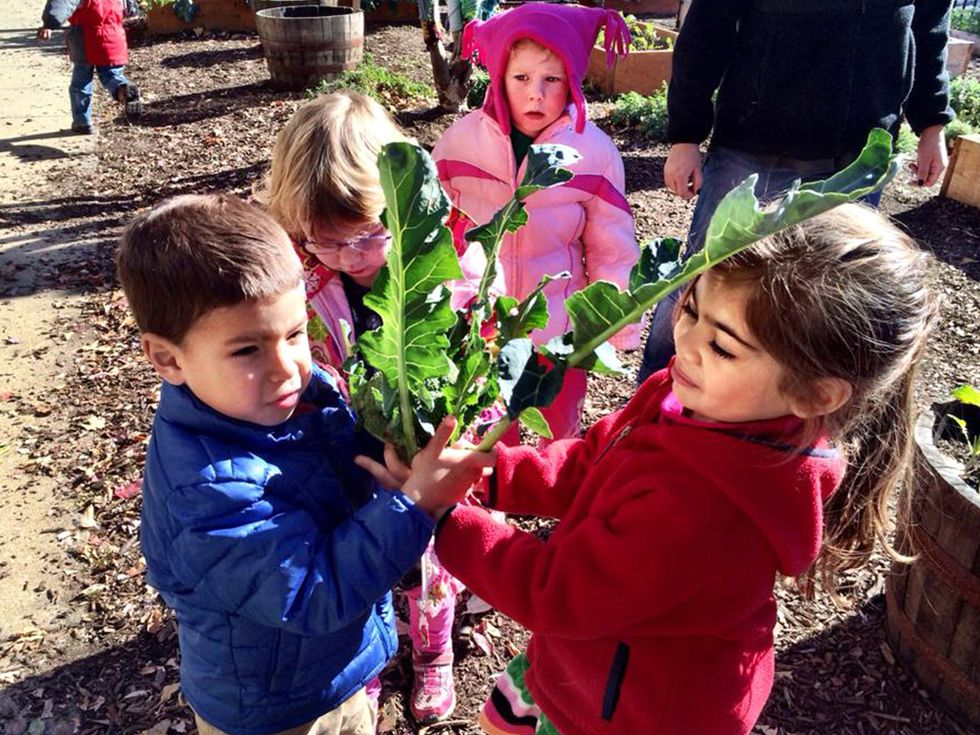 Every Month Is Farm to School Month at This DC School