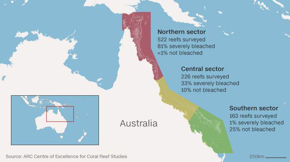 Psa The Great Barrier Reef Is Not Dead