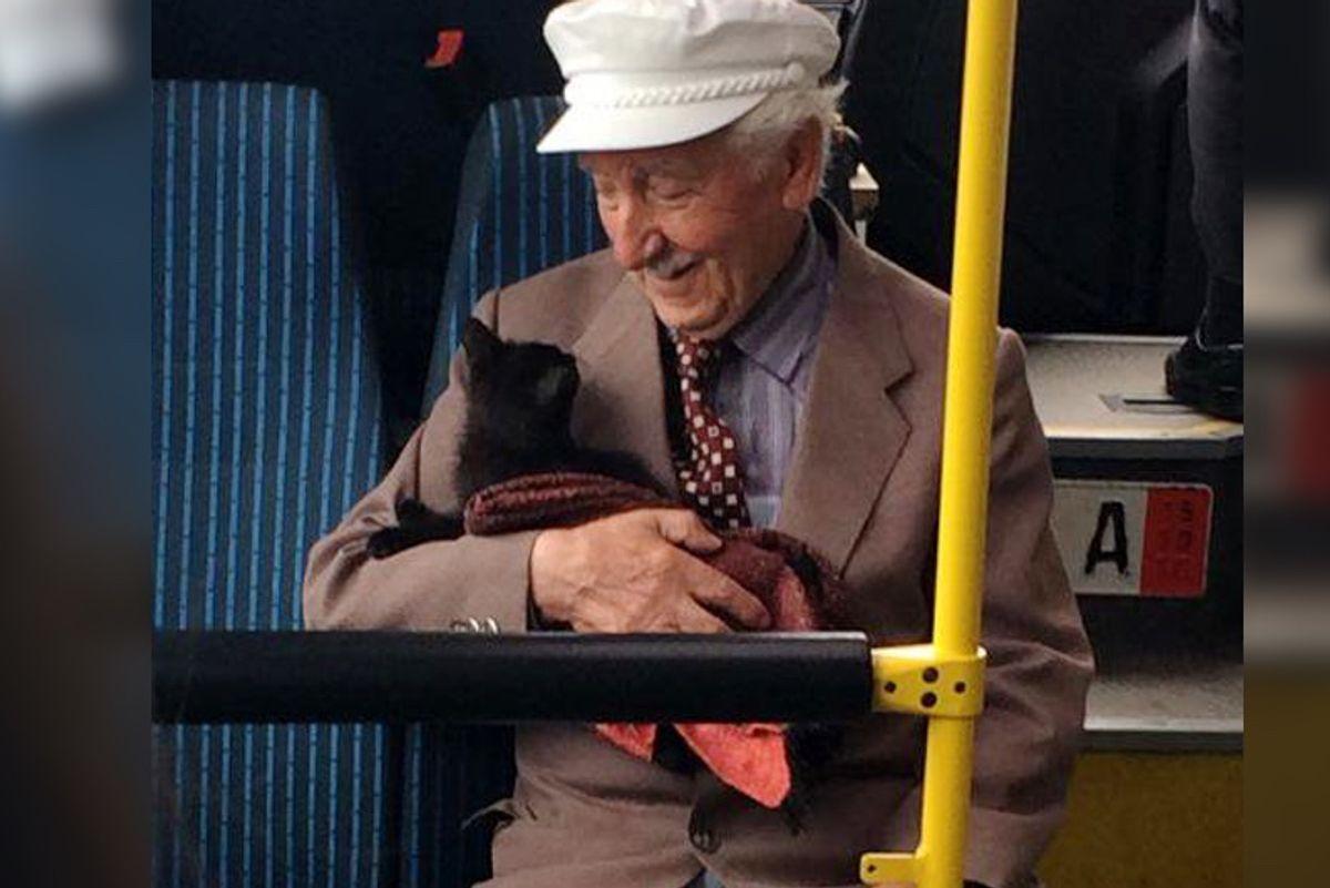 Grandpa Cuddling With Kitten on a Bus Warms Everyone's Heart - Beautiful Photo...
