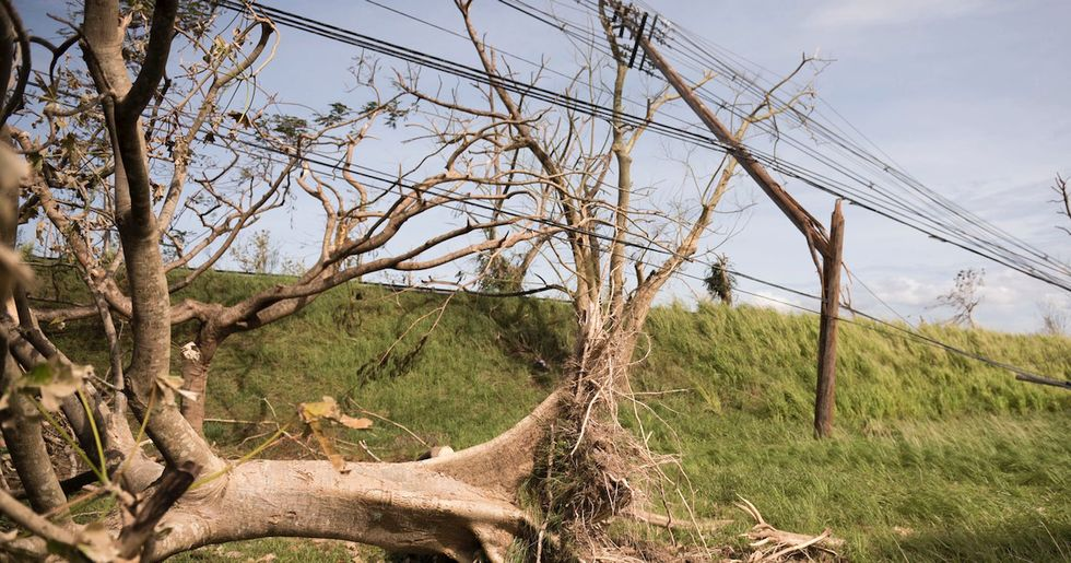 Whitefish Charges Puerto Rico $319 an Hour for Linemen, Then Pays Them $63 an Hour