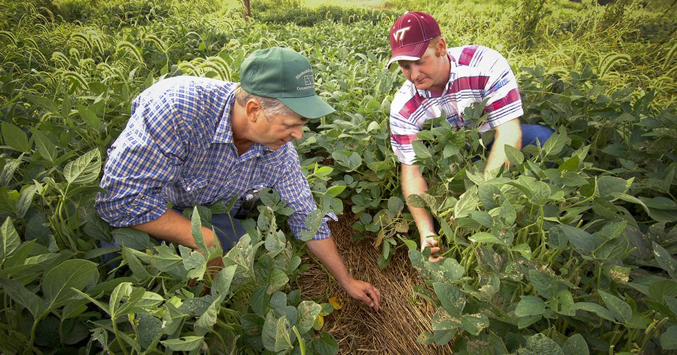 How Carbon Farming Can Help Solve Climate Change
