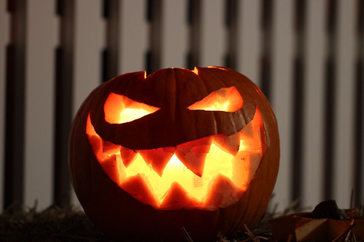 Which Classic Halloween Movie Are You Based On Your Zodiac Sign?