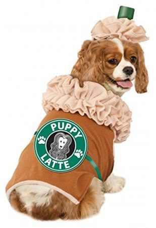 df569ca7e13 11 Ways to Decorate Your Dog This Halloween
