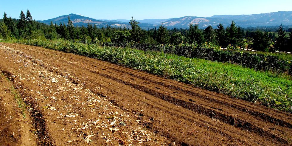 Soil Management: Key to Fighting Climate Change?