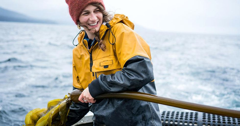 A Plea for Kelp: These Farmers and Chefs Want to Make Seaweed the Next Superfood
