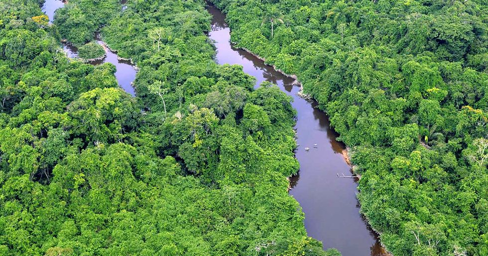 Conservation Goal for the Amazon Exceeded: More Than 60 Million Hectares Protected