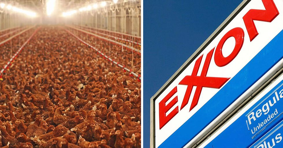 Greenhouse Gas Emission Giants: Why Tyson Foods Rivals Exxon
