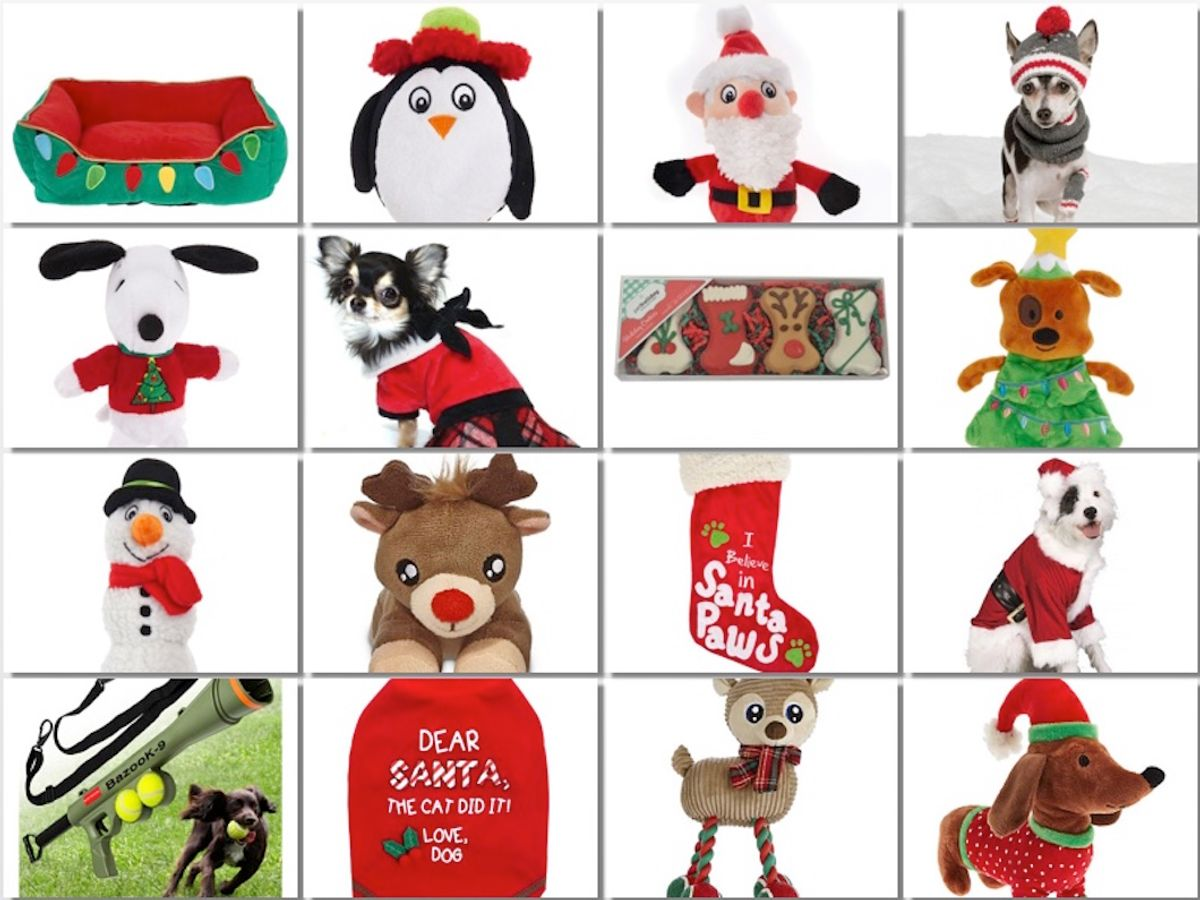 Christmas 2017: Best Presents For Your Dogs