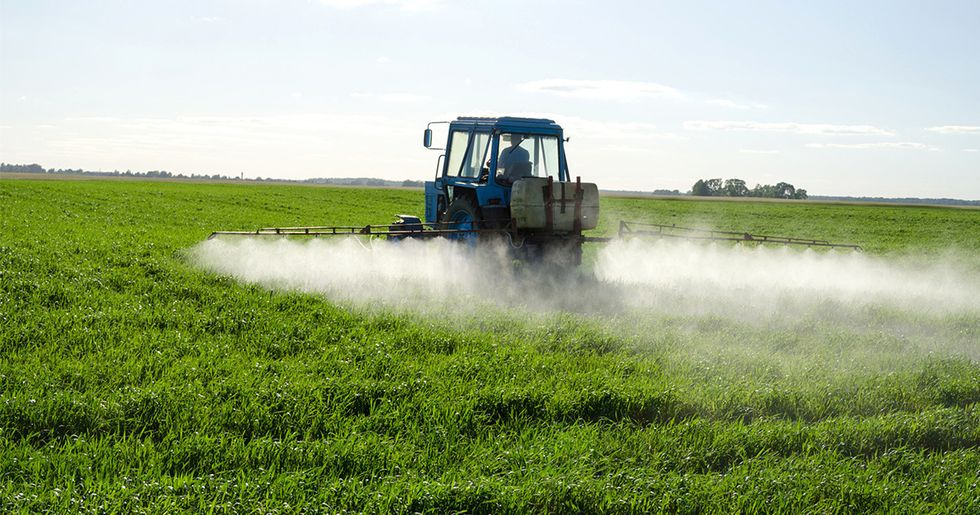 EPA Allowing Widespread Use of Unapproved Pesticides, Study Finds