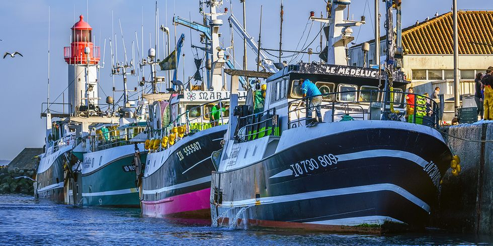 Fishing Limits Set Too High Again by Council of the EU