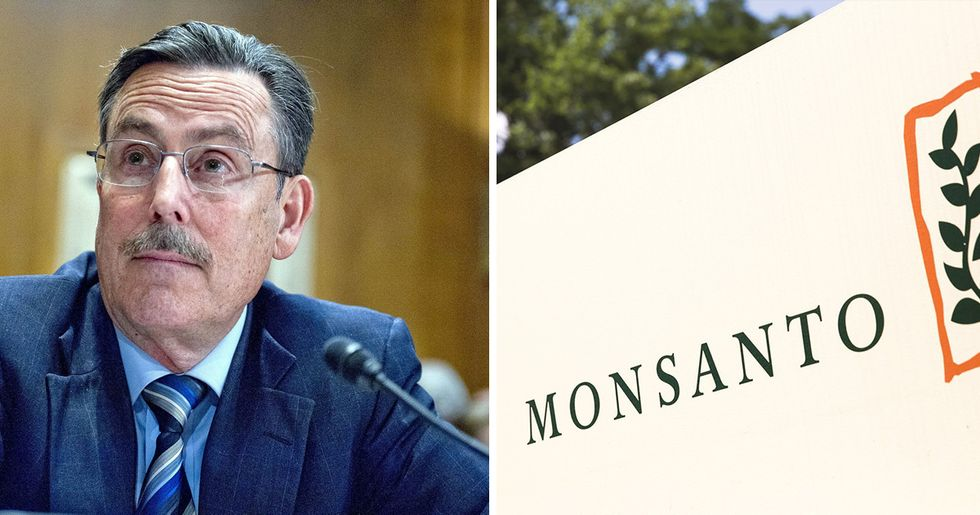 Victory! Monsanto Shill Michael Dourson Withdraws After Public Outcry