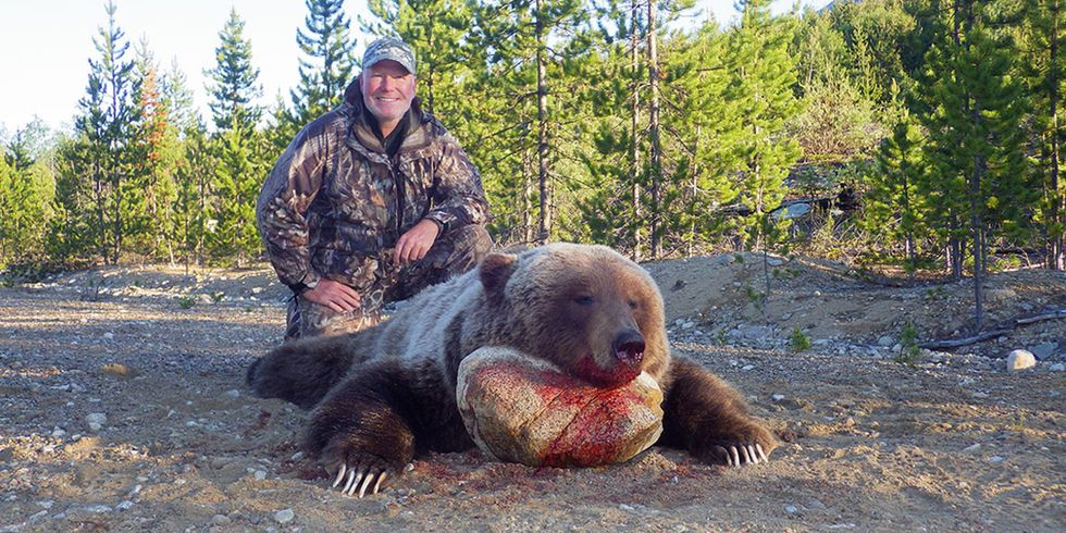 British Columbia Bans Grizzly Bear Trophy Hunting