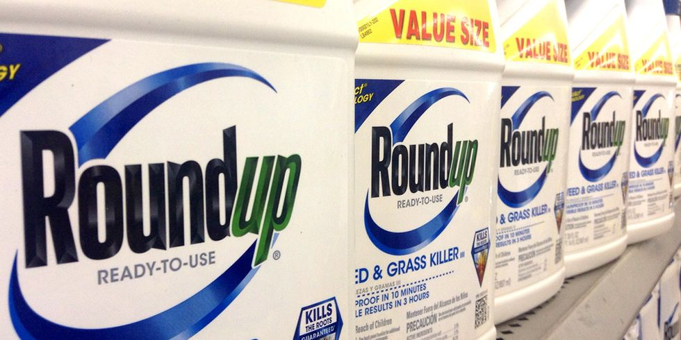 EPA Says Glyphosate Does Not Cause Cancer, Contradicting IARC