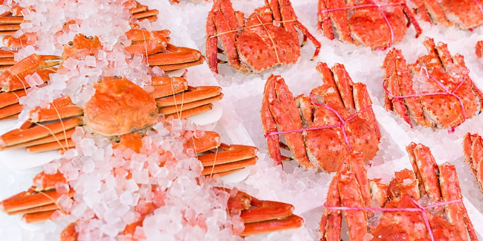 How Fishermen and Scientists Joined Forces to Bring Back Kyoto's Snow Crabs