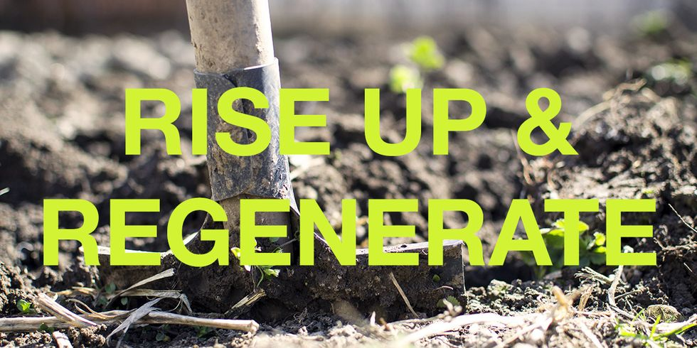 Let's Make 2018 the Year We Rise Up and Regenerate!