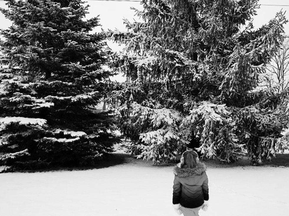 Description Essay: Winter - Words