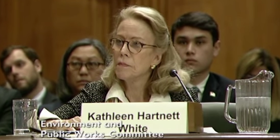 Trump Re-Nominates Anti-Wildlife Climate Denier to Top Environment Post