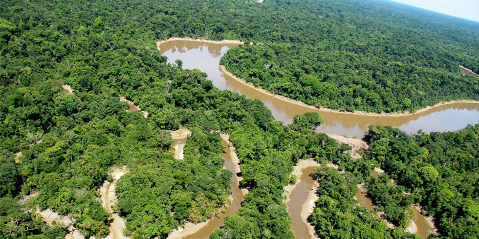 Peru's Newest National Park Safeguards 2 Million Acres of Amazon Rainforest