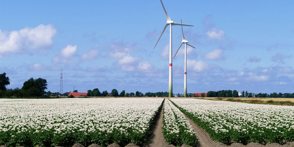 Germany Sets New Renewable Energy Record