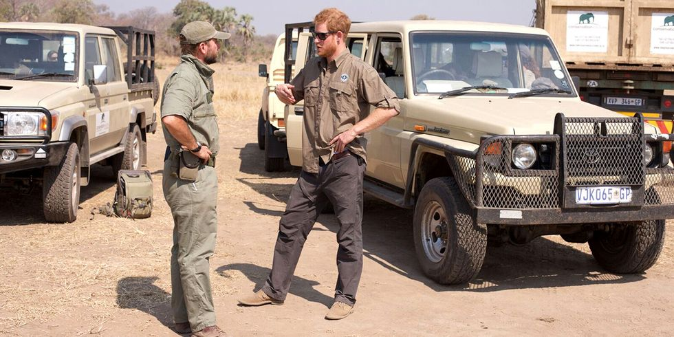 Prince Harry Becomes President of Conservation Group