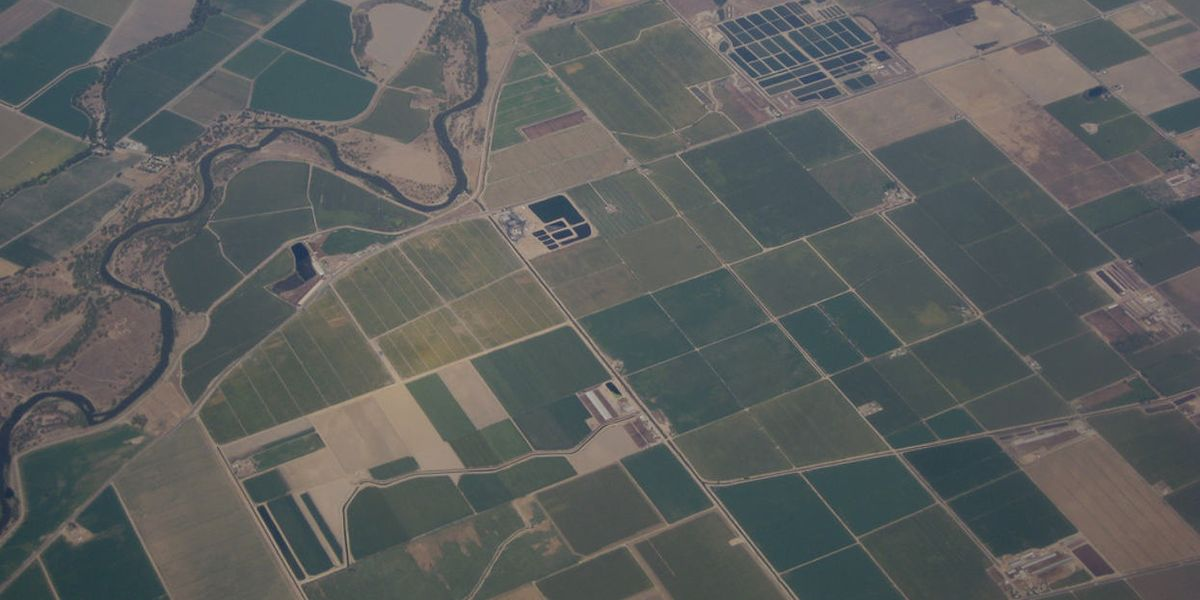 Fertilizer is fouling the air in California: Study