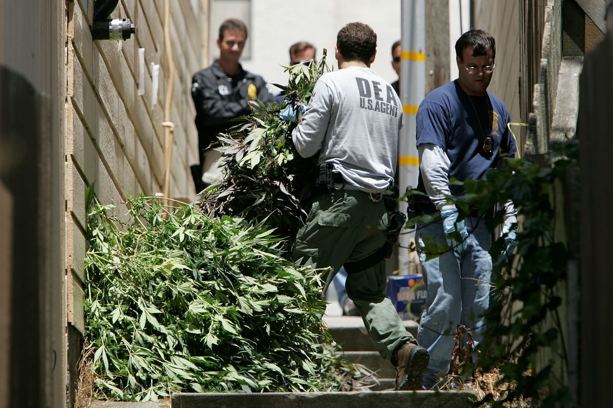 San Francisco to Absolve Thousands of Weed Convictions