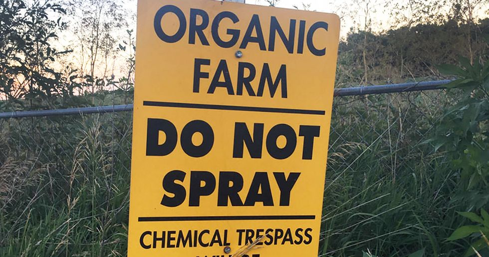 Missouri Organic Family Farm Faces Ruin After Herbicide Drift