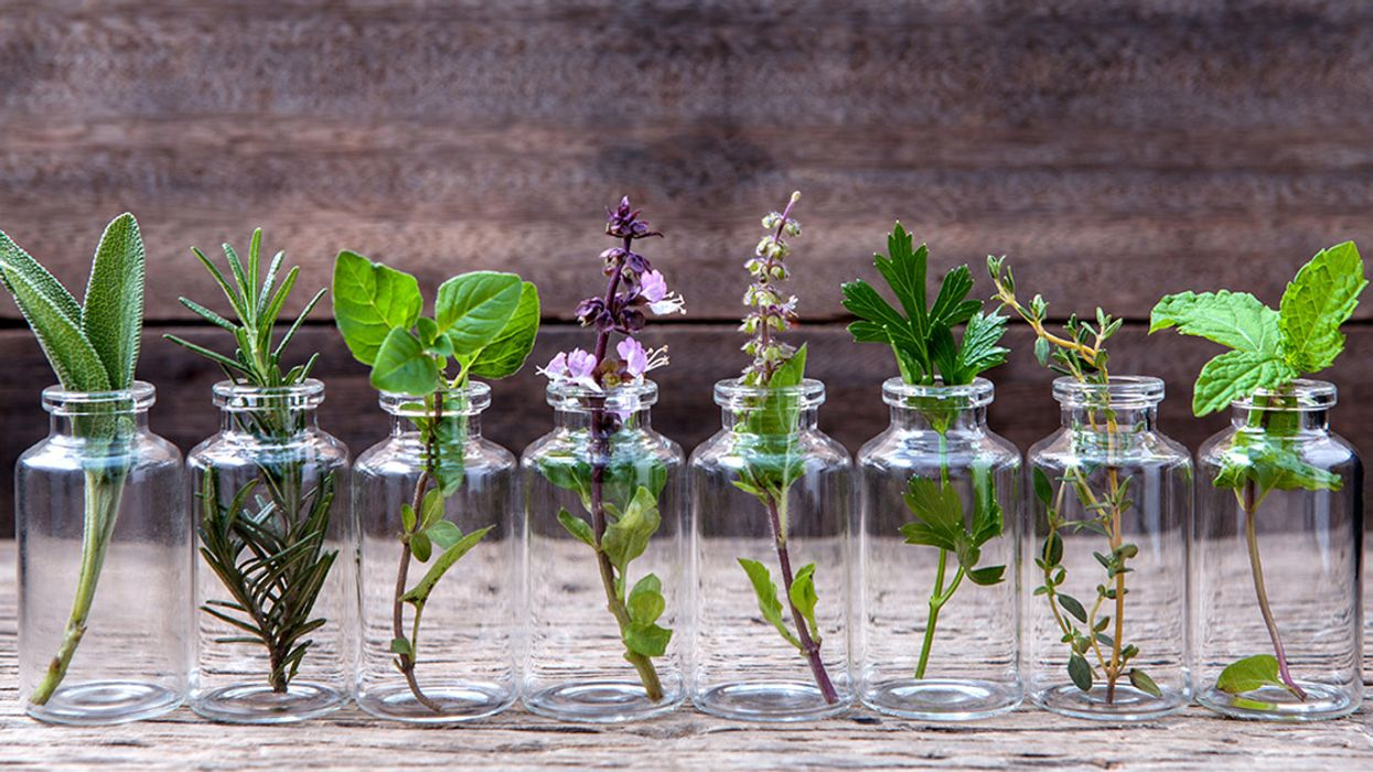Essential Oils: 7 Common Questions Answered