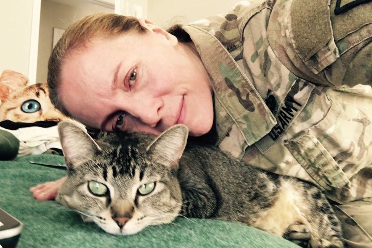 Cat Travels with Soldier Everywhere She Goes and Never Leaves Her Side for 4 Years.