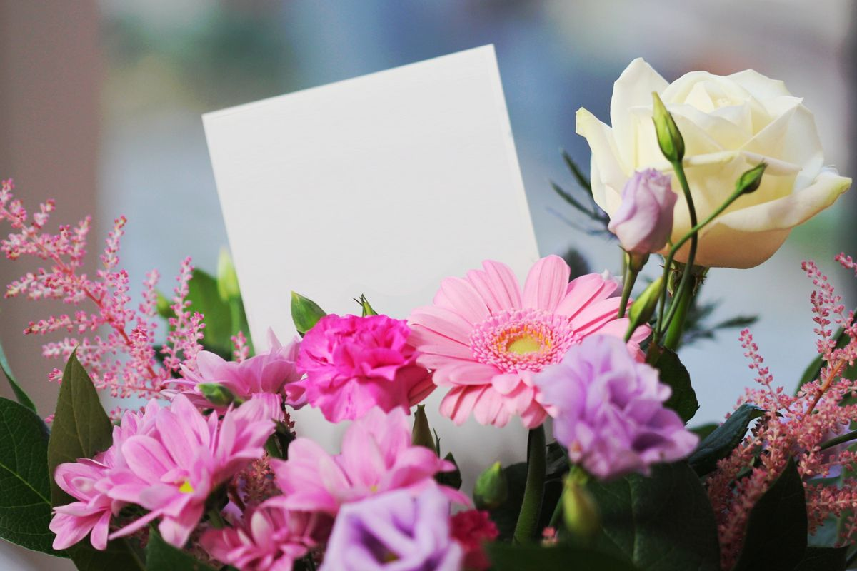 14 Flowers To Present On Valentine's Day That AREN'T Roses
