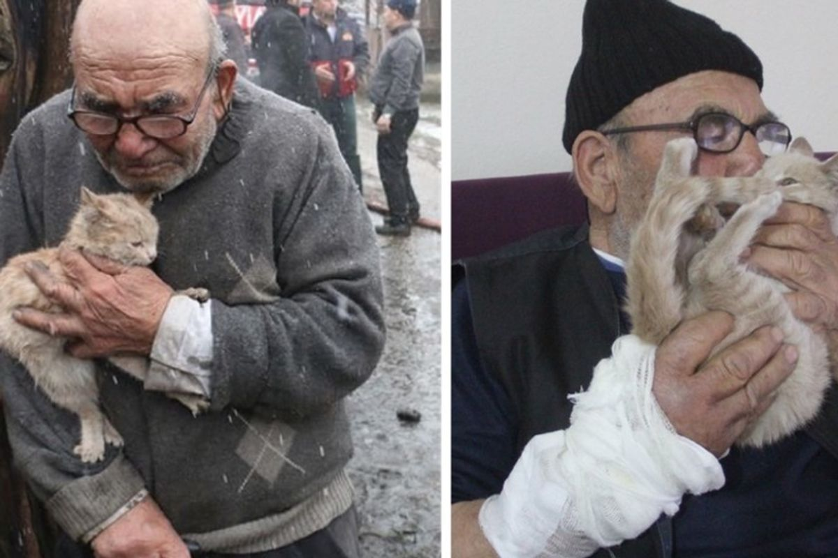 Elderly Man Held His Beloved Kitten After Losing Everything to Fire, Now Has a Safe and Warm Place
