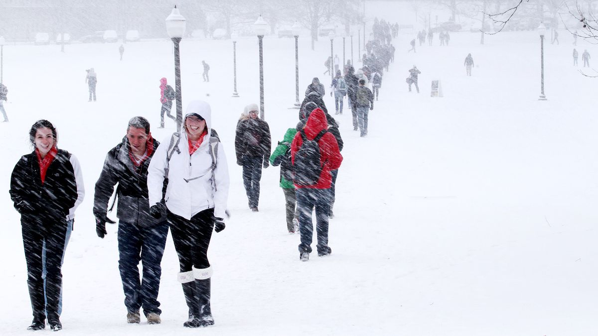 10 Thoughts You Have Trudging Through The Drillfield In A Blizzard