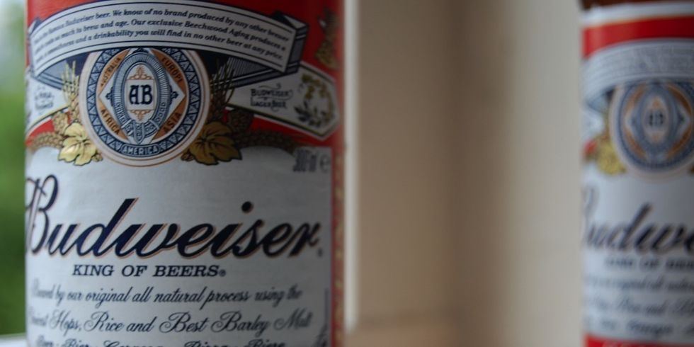 Cheers! Budweiser Switches All U.S. Brewing to Renewables