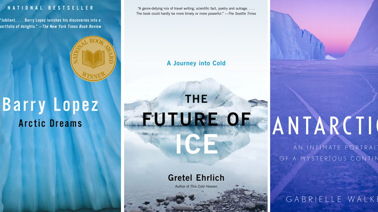 Want to Know More About Polar Regions? Check Out These 13 Books