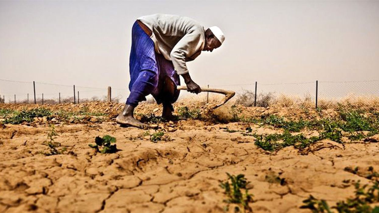 Climate Change, Conflict Leave 224 Million Undernourished in Africa