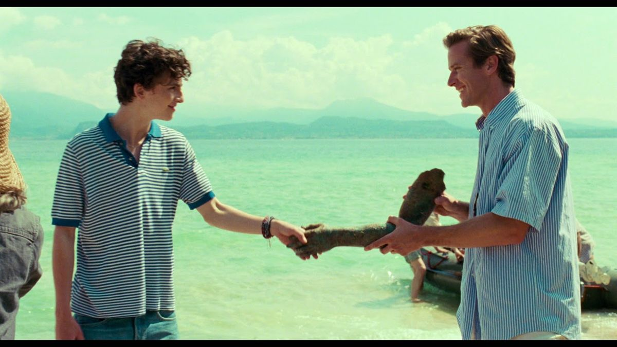 The Brilliance Of 'Call Me By Your Name'