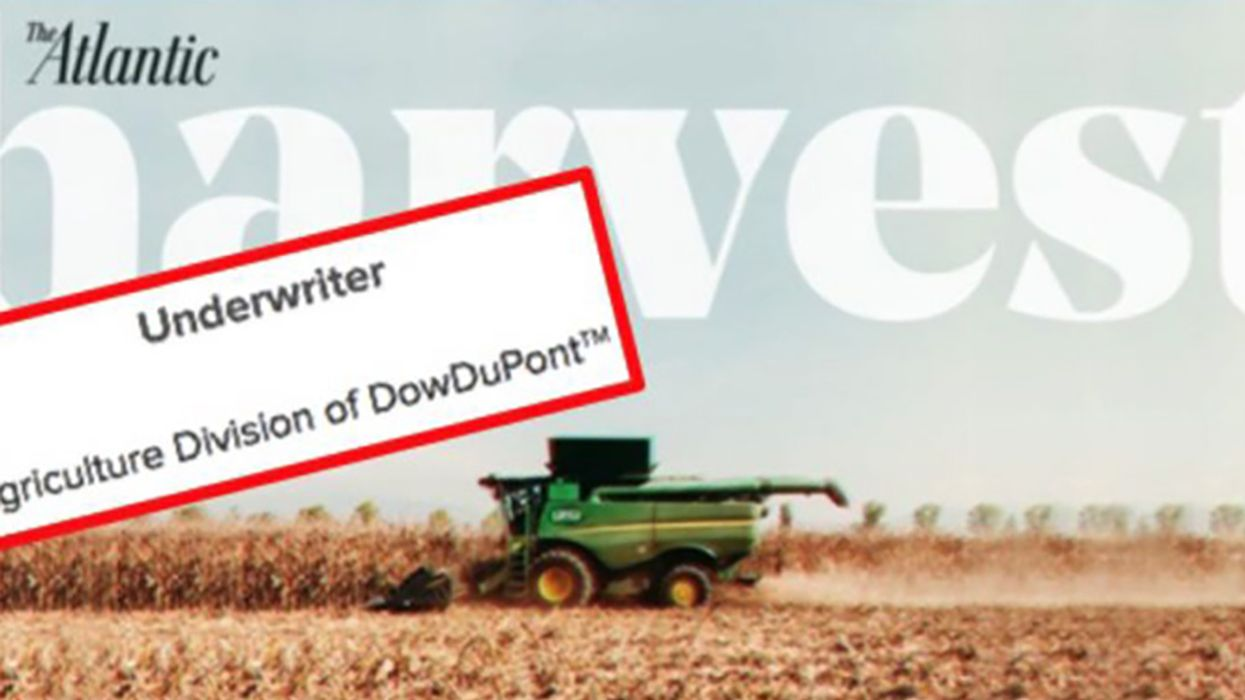 Transforming the Food We Eat With DowDuPont