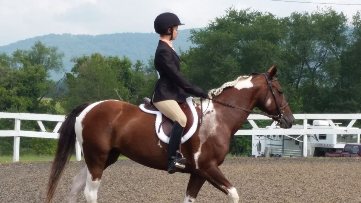 7 Reasons Horse Riding Is Actually Really, Really Hard