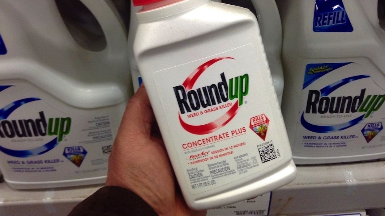 Judge to Decide if Monsanto Roundup Cancer Lawsuits Move Forward at Crucial Hearing