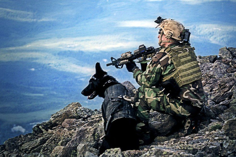 SEAL Team 6 operator killed in one of Trump administration's
