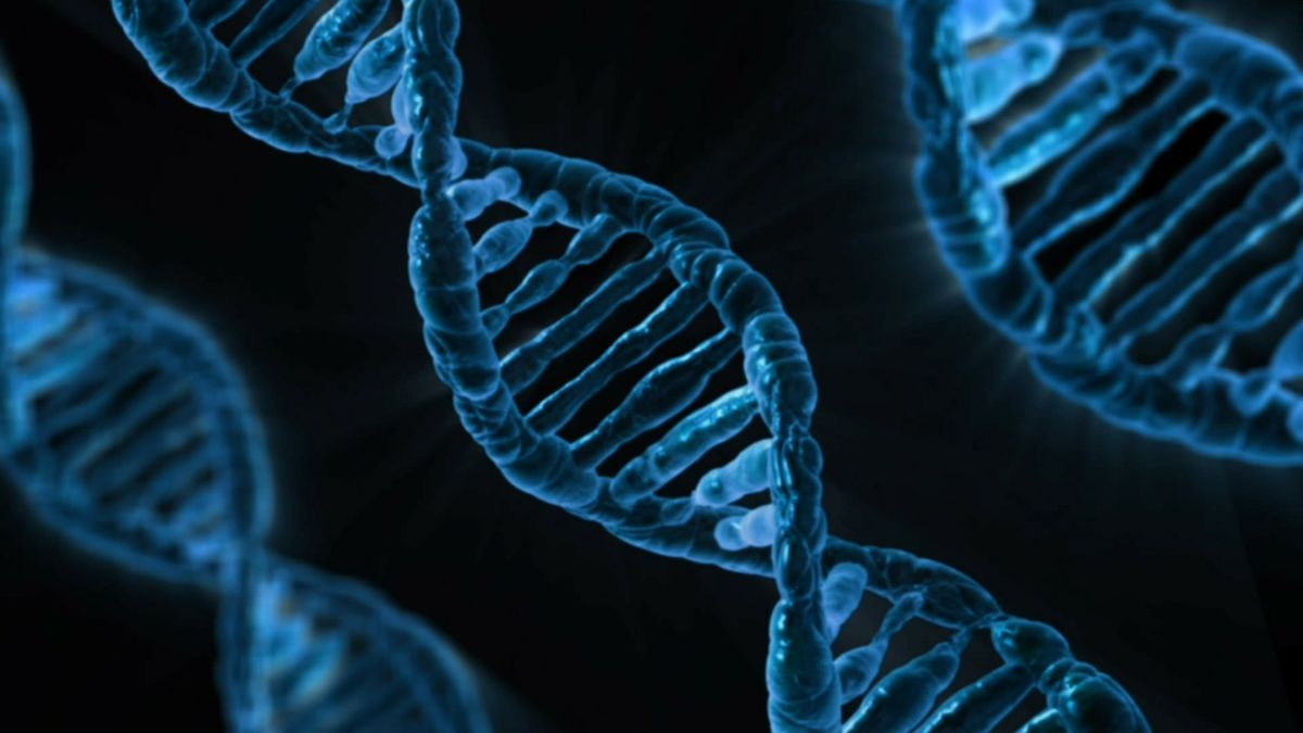 Why You Should NOT Do That Genetic Counseling Test