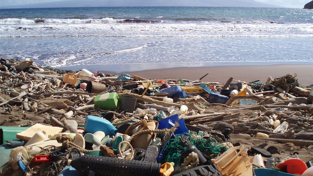 Ocean Plastic Projected to Triple Within Seven Years