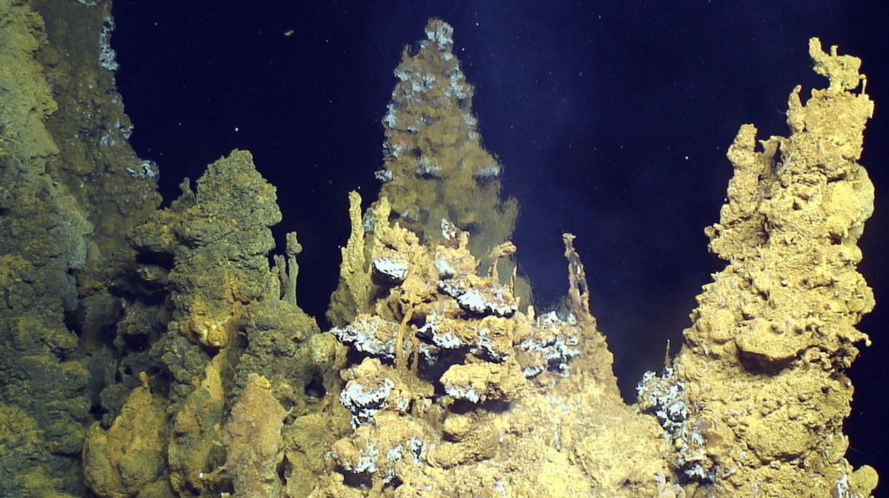 Deep Sea Mining Decisions: Approaching the Point of No Return